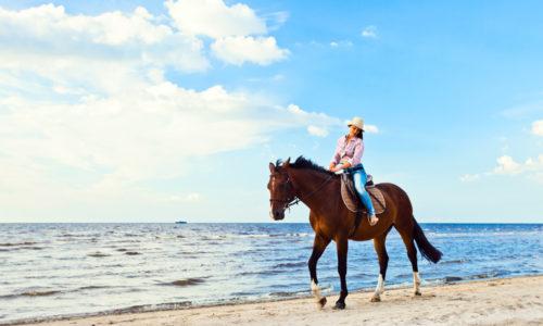Horseback-Riding-1