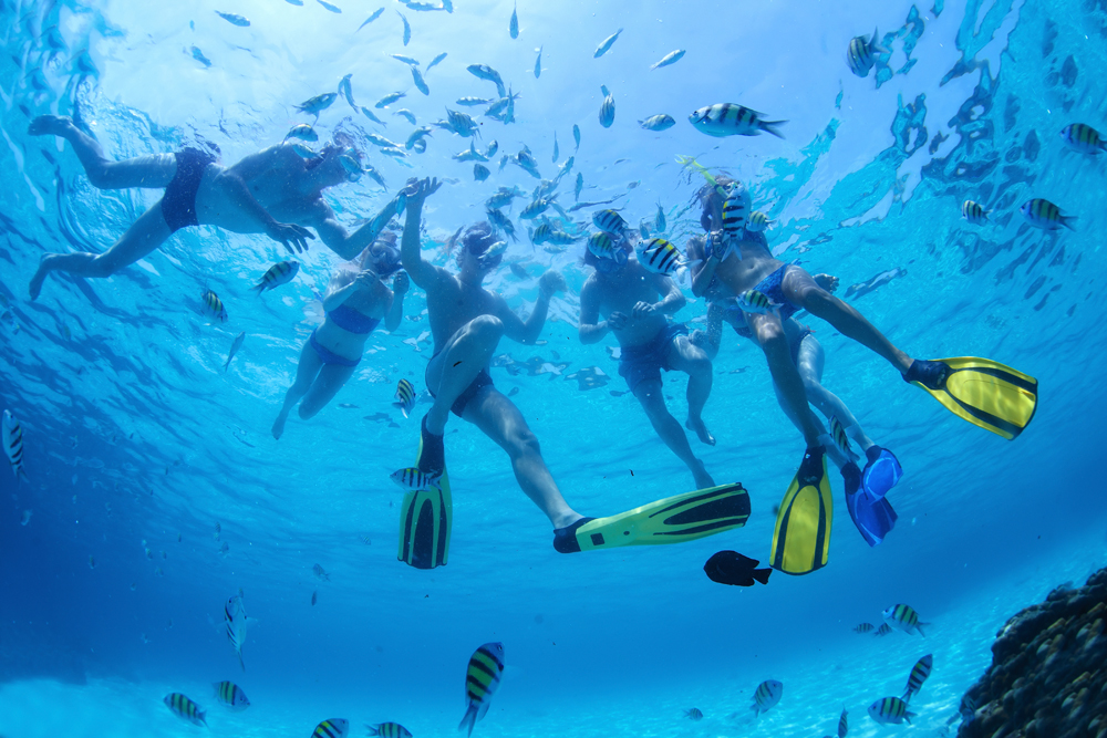Sail-and-SnorkelTrips-2