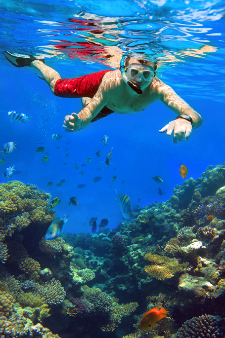 Sail-and-SnorkelTrips-4